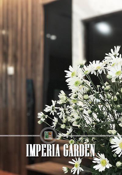 Thi công nội thất chung cư imperia garden hiện đại