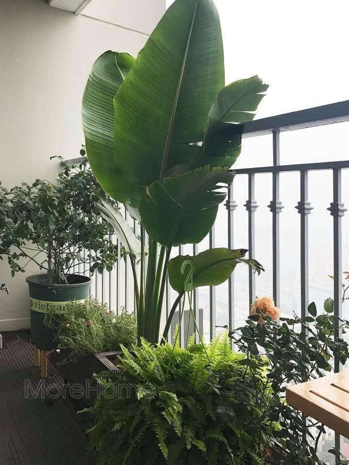 Thi công nội thất chung cư vinhomes gardenia hàm nghi